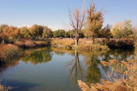 Laguna del Zurrón